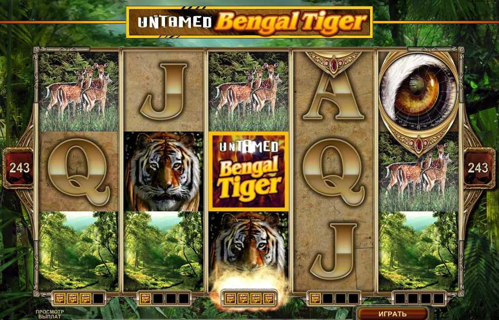 """SPIN PAL:ACE CASINO :: Новый игровой автомат Untamed–Bengal Tiger (""""Неукротимый-Бенгальский тигр"""")"""